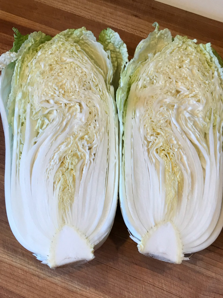Napa Cabbage for Summer Slaw