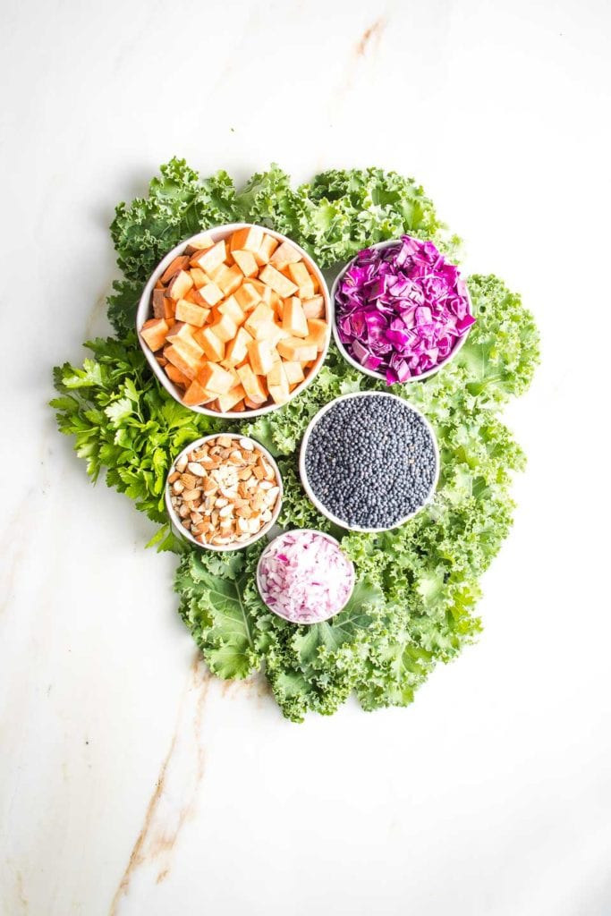 Vegan lentil salad ingredients: White bowls filled with colorful ingredients nestled on a bed of bright green kale. Black lentils, chopped almonds, cubes of orange sweet potatoes, bright purple cabbage and minced purple onions.